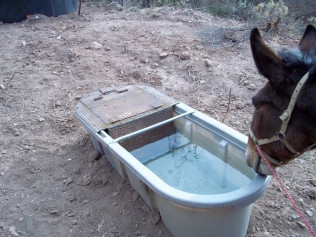 Livestock Water Systems